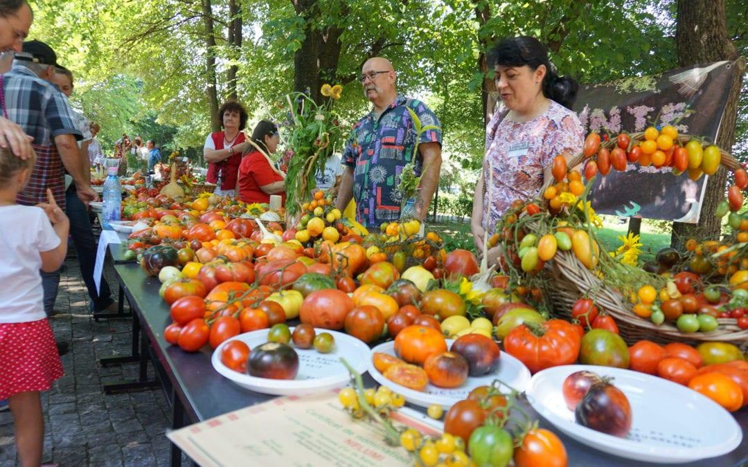 Din suflet, in capitala tomatelor din Romania