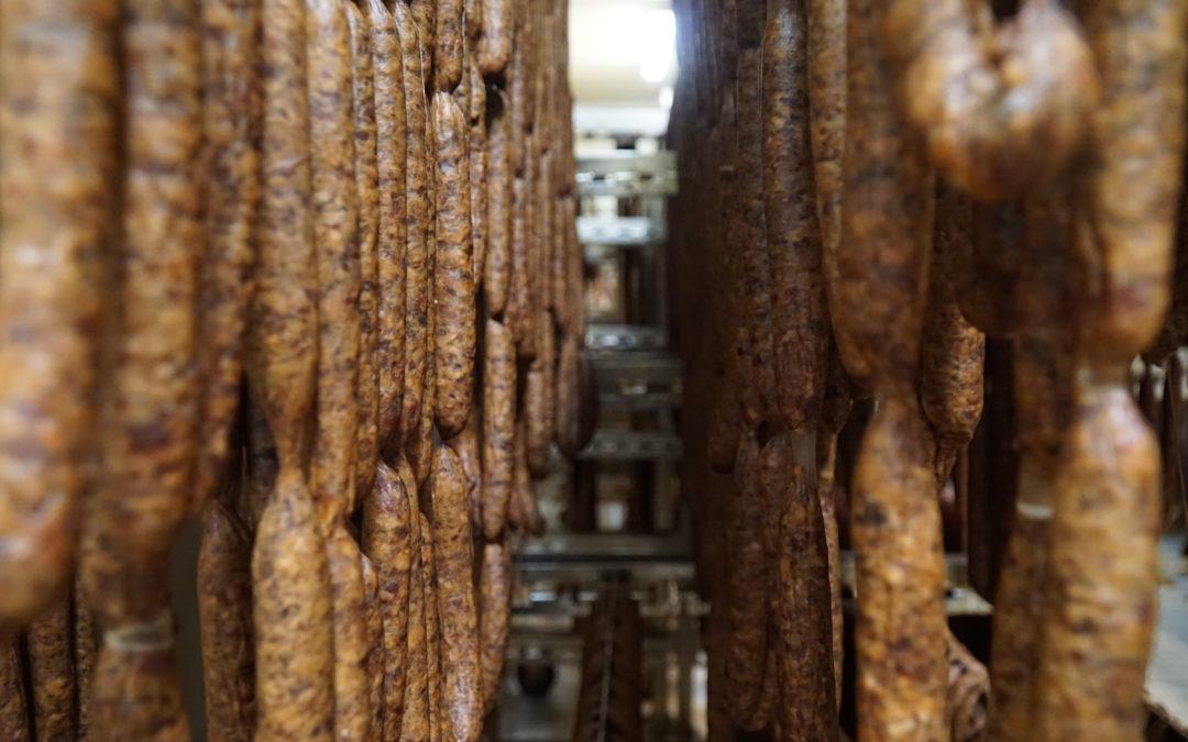 Carnatii de Plescoi, din sat in UE